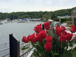 roses 61